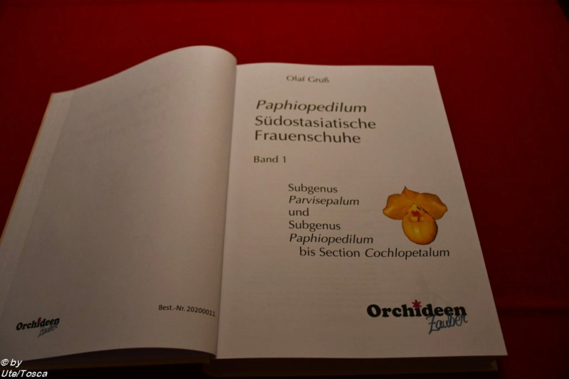 Neues Paphiopedilum-Buch Paph_b10