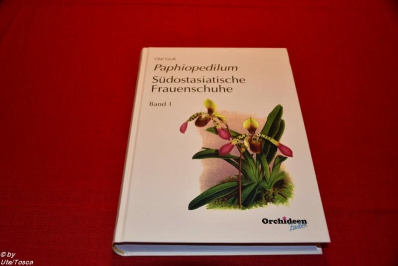 Neues Paphiopedilum-Buch Paph_b11