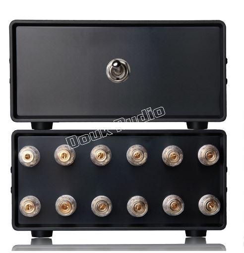 AYUDA ¿cómo tener conectados varios amplificadores a unos mismos altavoces? Douk-a10