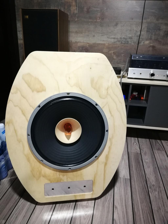 """Proyecto Open Baffle Lii Audio - F15"""" Img_2059"""