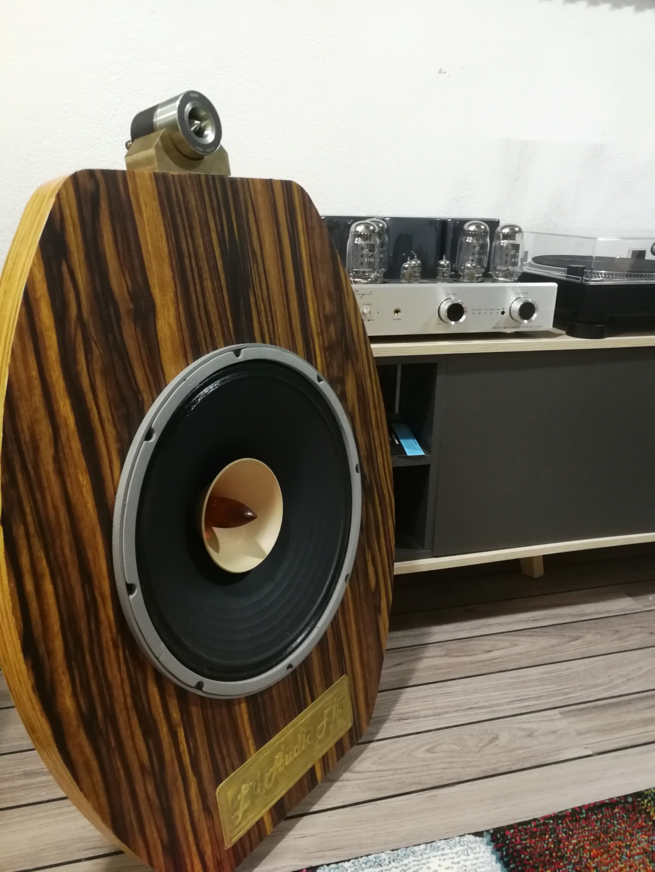 "Proyecto Open Baffle Lii Audio - F15"" - Página 8 Img_2078"