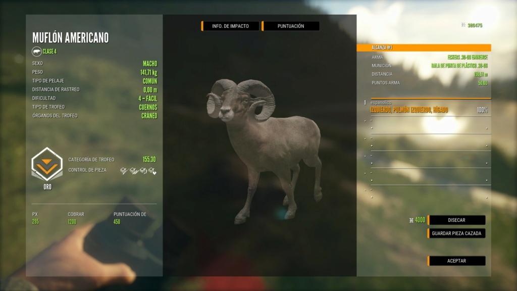TOP 5 BIGHORN SHEEP 51879074