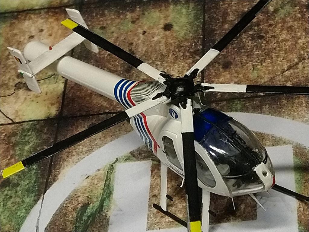 [ Spécial Hobby] MD-520N  - Fini. Dsc_0565