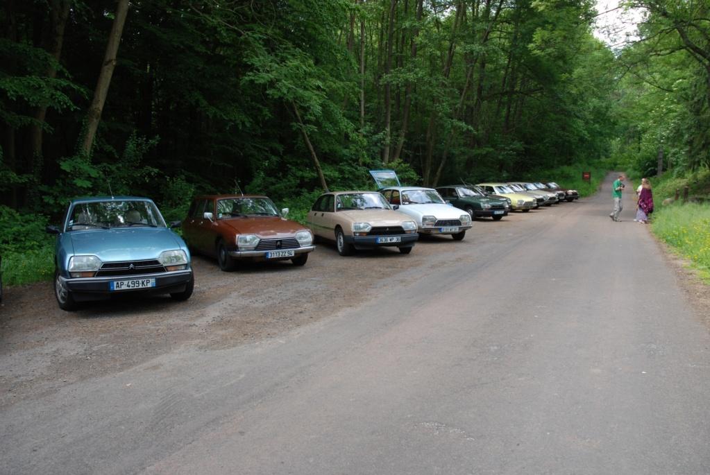 Nostalgie en forêt Carnel12