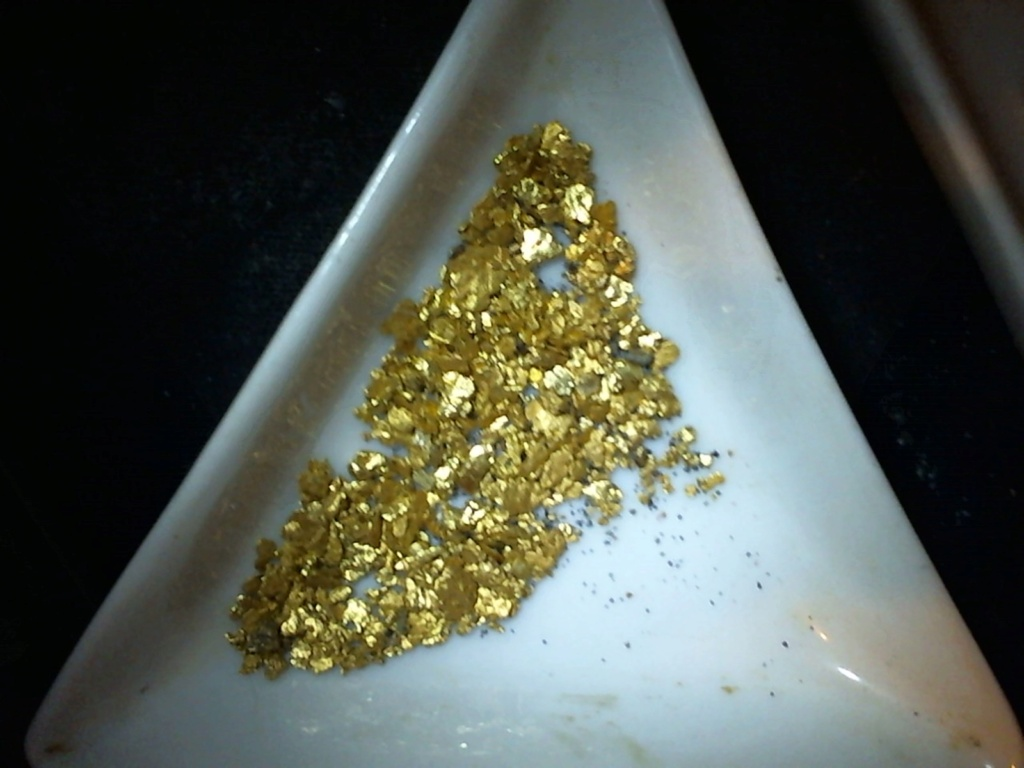 Placer gold, lode gold, ore and specimens Pictur17