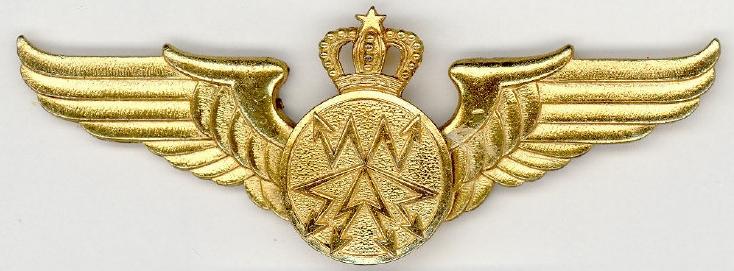 RMAF insignia Swirls Patches / Ecussons,cocardes et Insignes Des FRA Clipb163