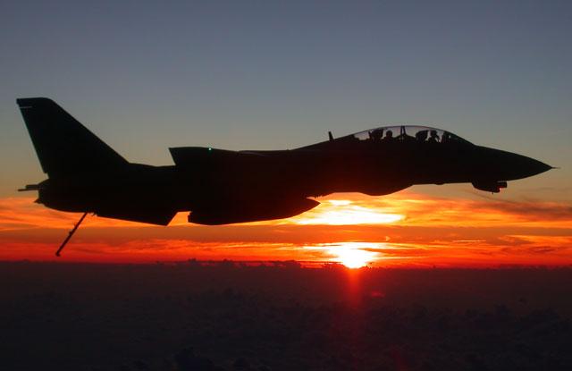 F-14 Tomcat - Page 2 F14bat10