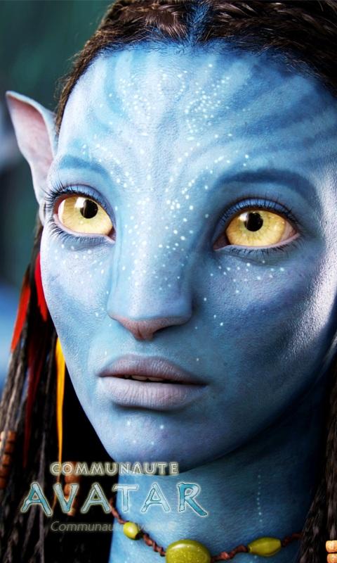 buste Neytiri Avatar Commun10