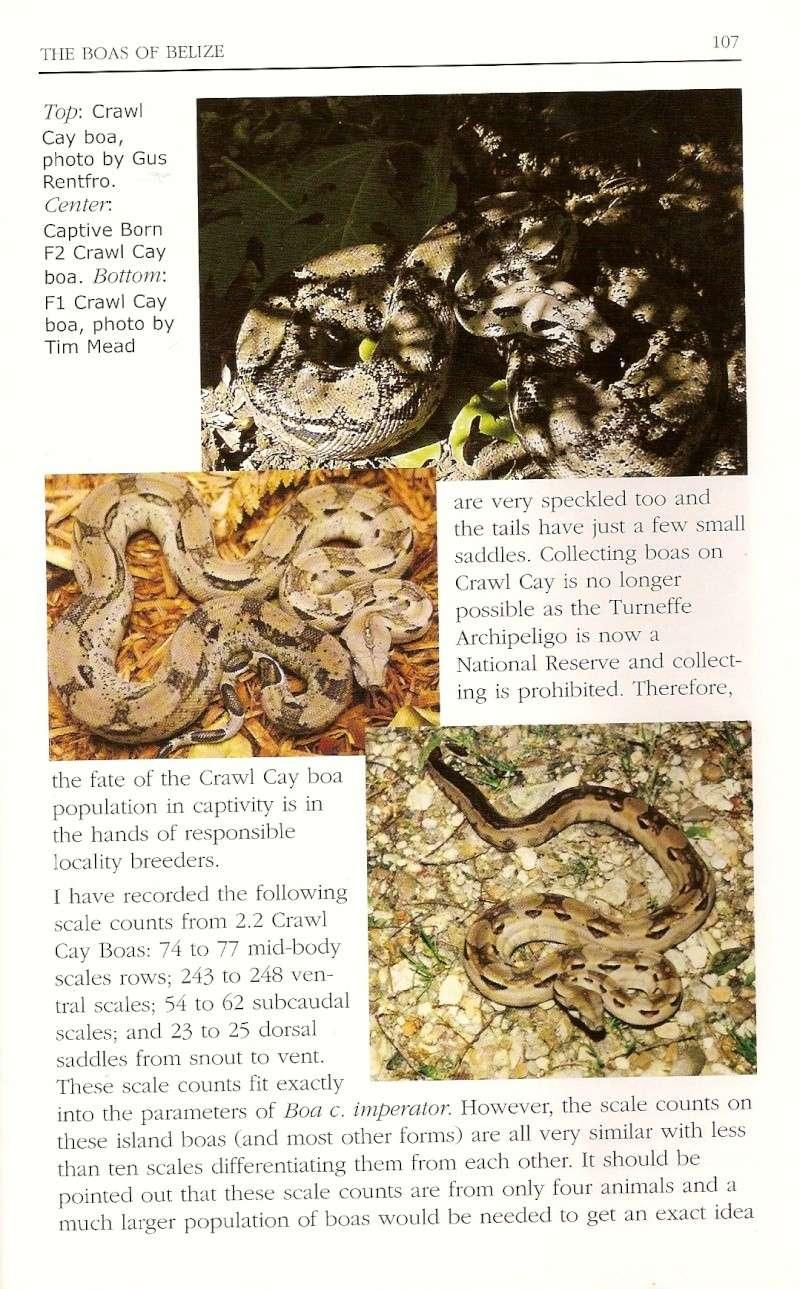 Crawl Cay : Europe / USA Numari18