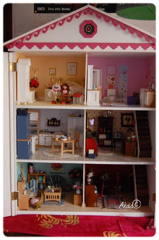 Le Manoir (dollhouse 1/12ème pour ma puki²) - Page 2 Dsc_8112