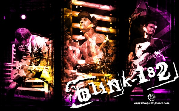 S'enregistrer Blink110