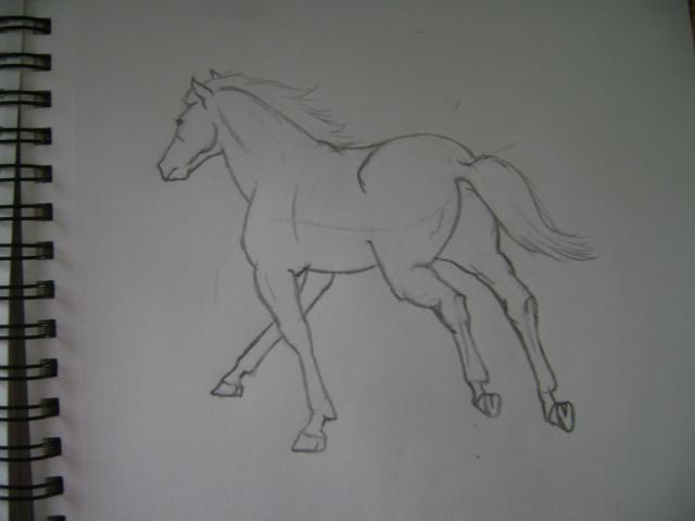 mes dessins Dsc01210