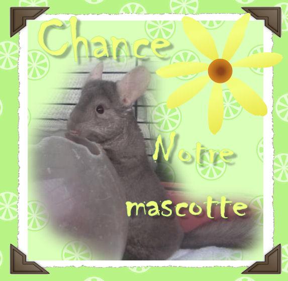 Chance, notre Mascotte - Page 3 Chance15