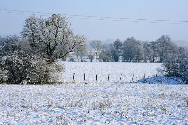 Paysages d'hiver 1_1111