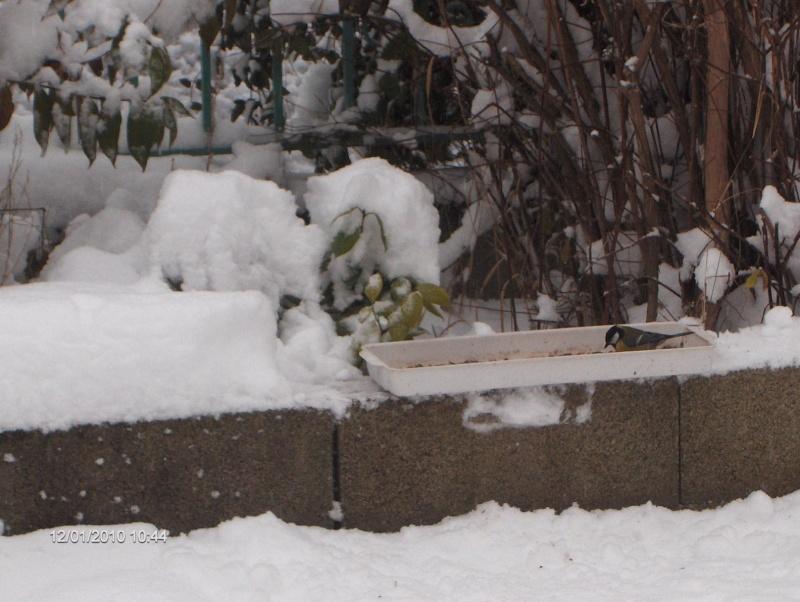 l'hiver est bien làààà 01010