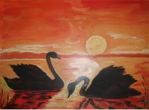 Coucher de soleil sur des cygnes ( pastel sec) Cygnes11