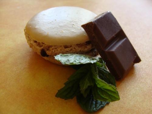 macarons choco menthe Macaro11