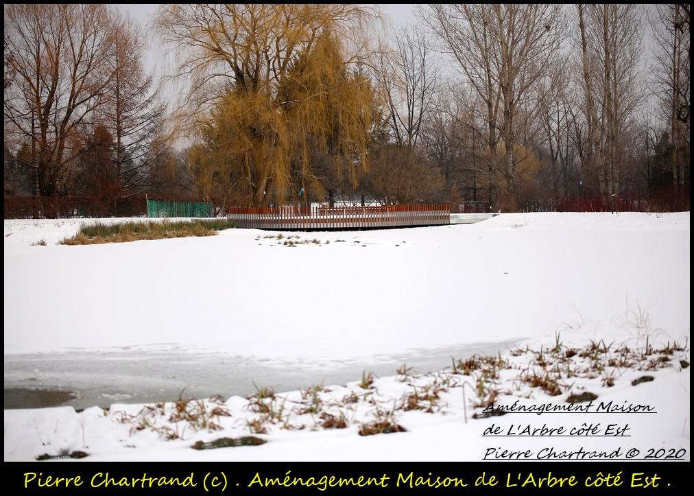 Jardin Botanique . Amzona10