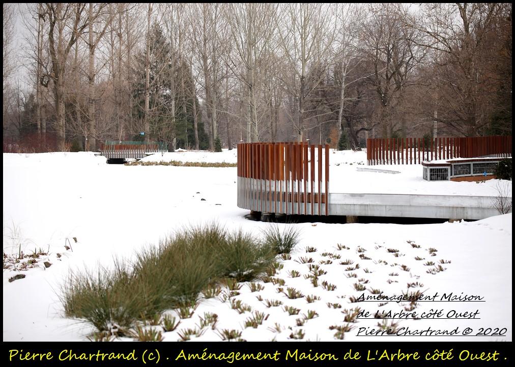 Jardin Botanique . Amzona11