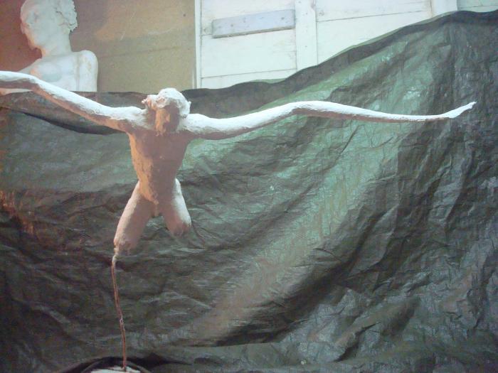 Voler de ses propres ailes 611