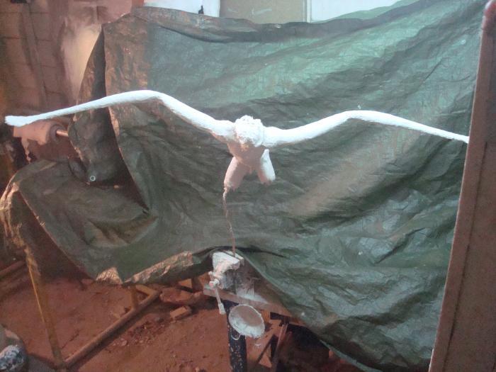 Voler de ses propres ailes 711