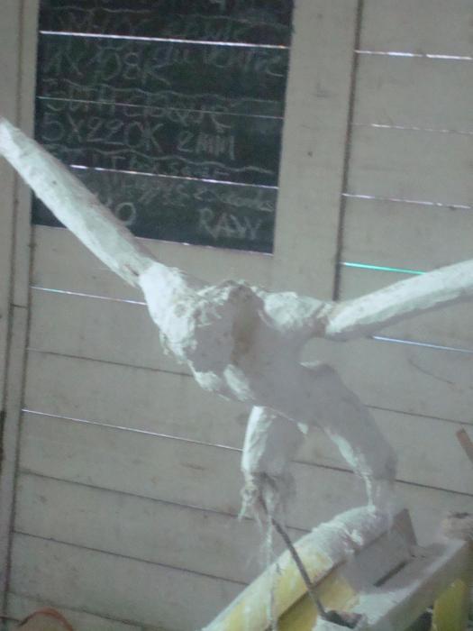 Voler de ses propres ailes - Page 4 Fofo_310