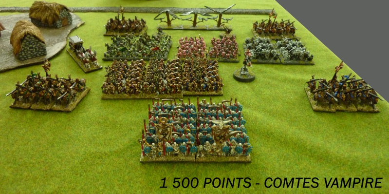 Orc vs Hauts elfes et Comtes vampire 00_arm10