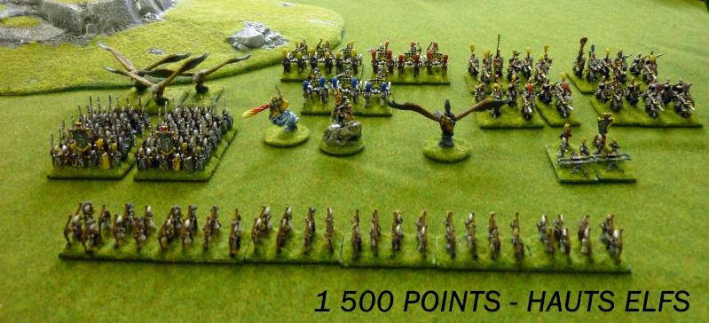 Orc vs Hauts elfes et Comtes vampire 00_arm11