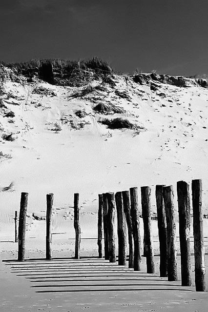 Wissant plage Dsc_4810