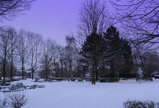 Paysages sous la neige Neige_11