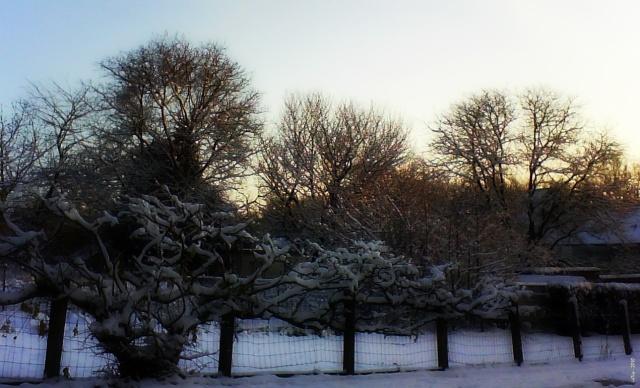 Paysages sous la neige Neige_12