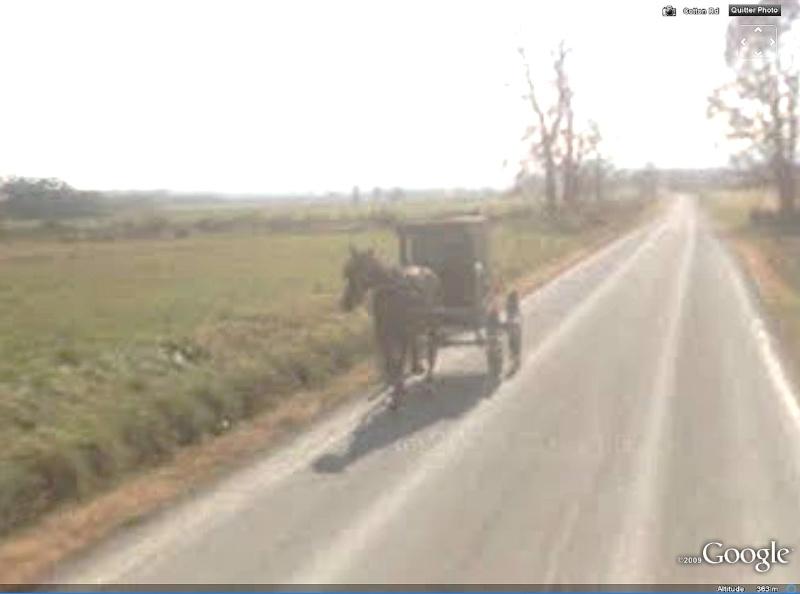 STREET VIEW : à la découverte des Amishs Amish310