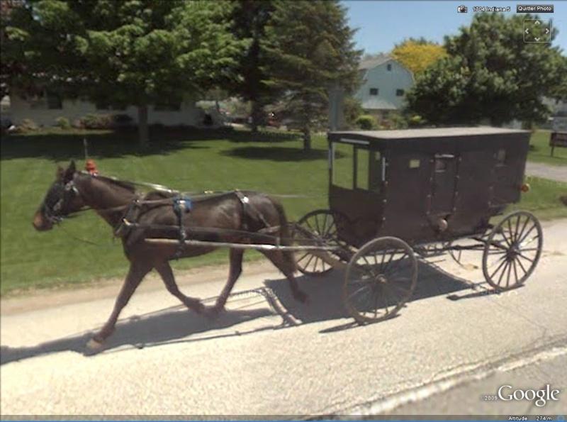 STREET VIEW : à la découverte des Amishs - Page 2 Amish610