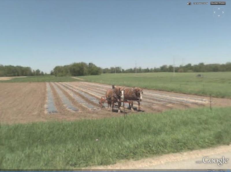 STREET VIEW : à la découverte des Amishs - Page 2 Champs10