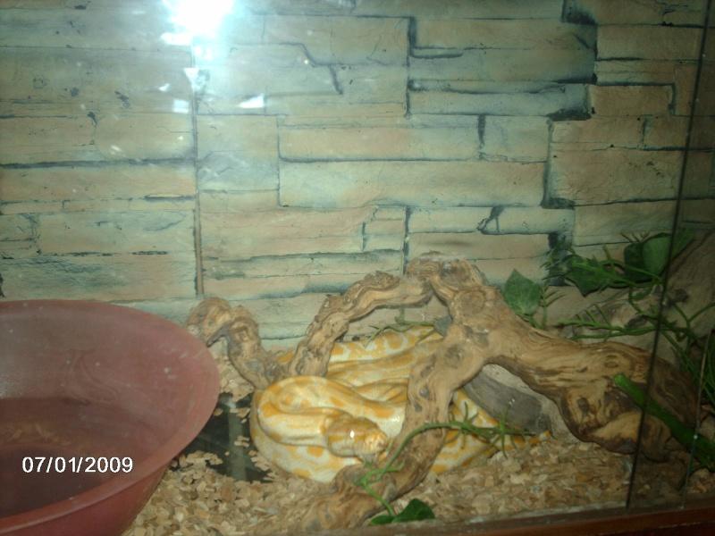 mes 2 python a moi Imag0011