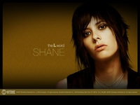 The L Word - Saison 5 - Wallpaper Shane