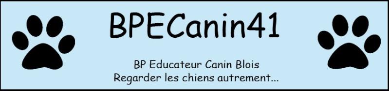 BP Educateurs canins BLOIS 2009 - 2011