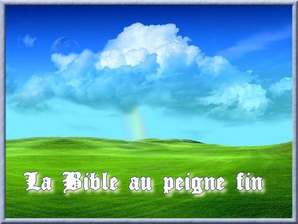 La bible au peigne fin