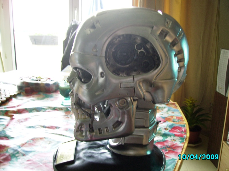 model vinyl skul terminator Imgp0313