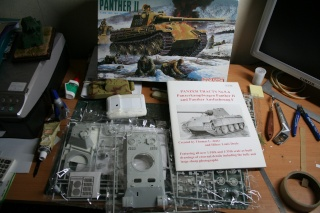 Panther II - Page 4 Img_4110