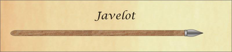 chasse et techniques 3éme partie Javelo10