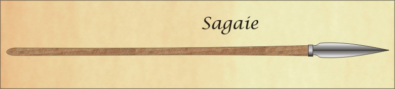 chasse et techniques 3éme partie Sagaie10