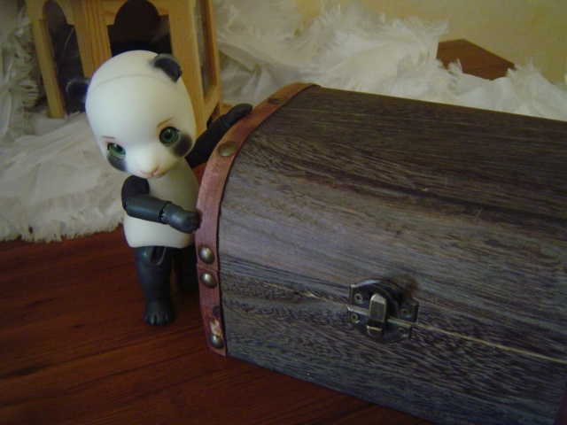 Tao & Mao (AE Panda & Pipos Ringo) Tao le retour (p.5) - Page 2 Dsc04422