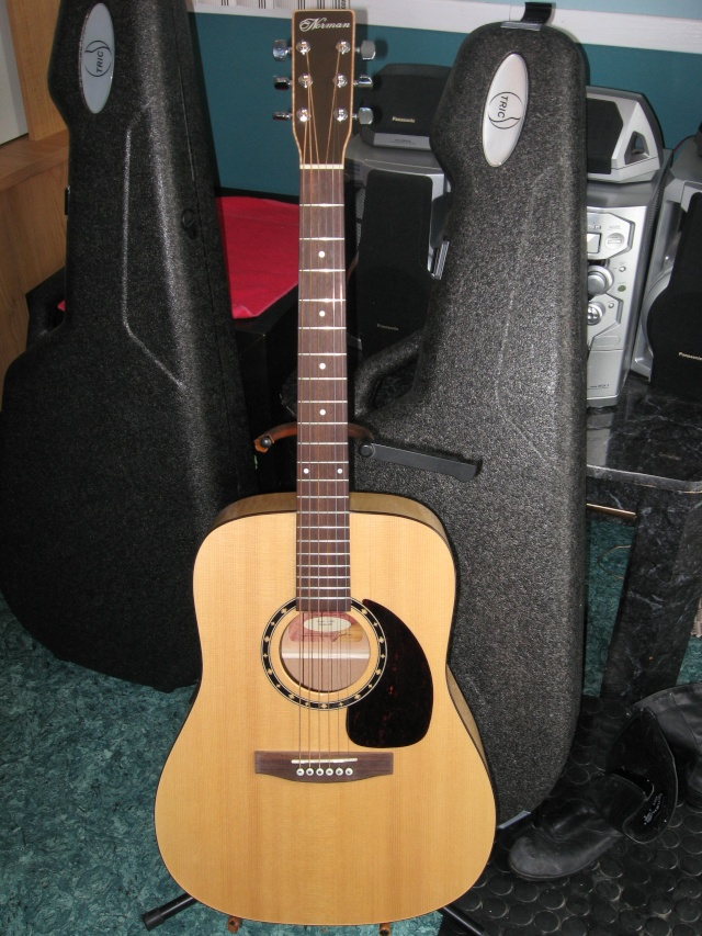 guitar13.jpg