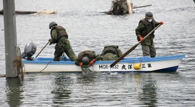 Terremoto en Japón - Página 3 Fuerza14