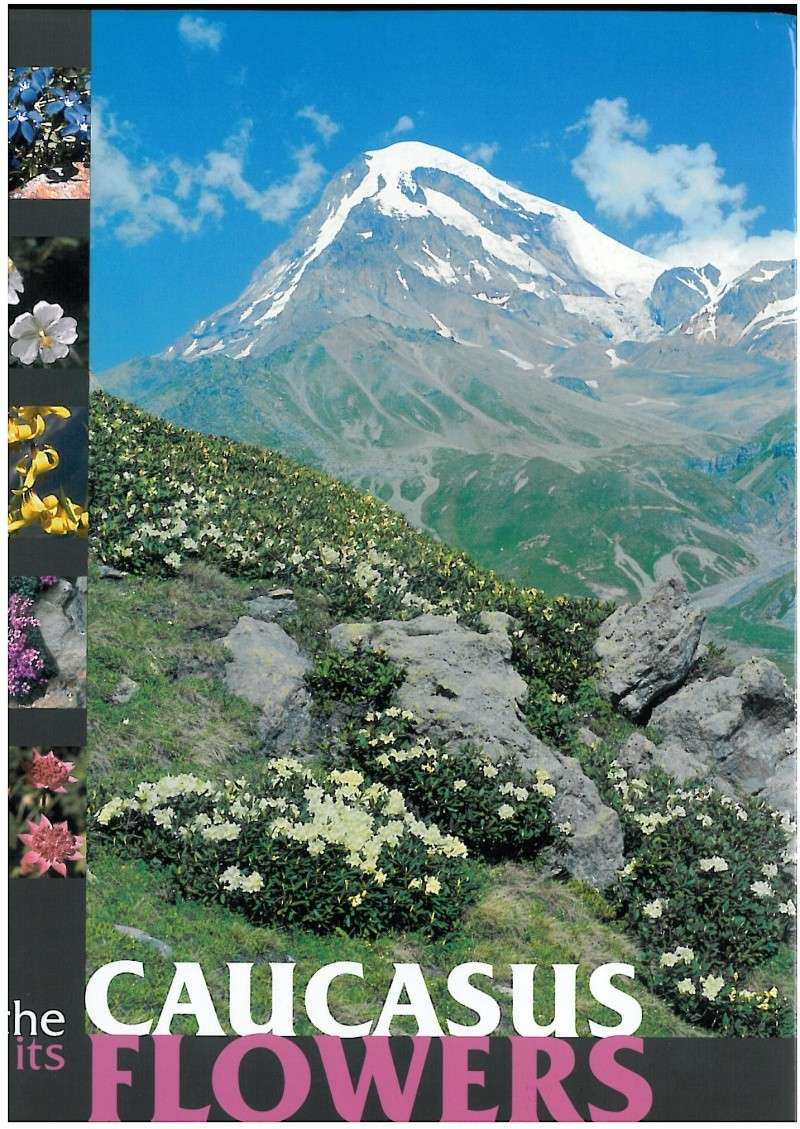 The caucasus and its flowers Skmbt_10