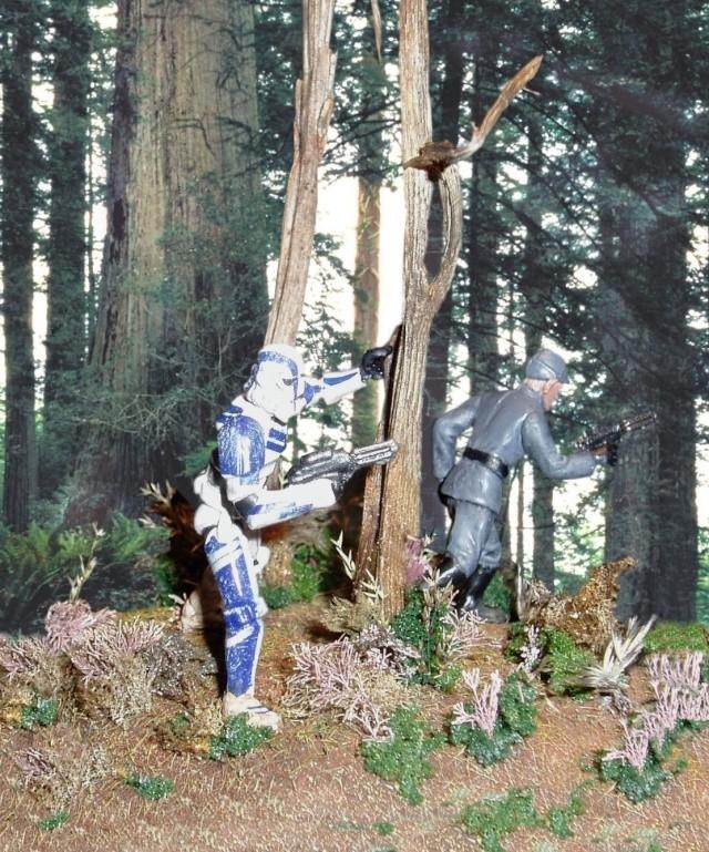 Scénettes Star Wars Miniatures P2260012