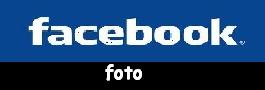 Brčko - Vukovaru 2012. Facebo10