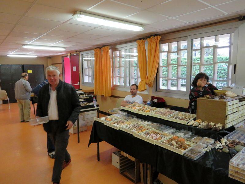 Dimanche 9 Juin 2019 - 23ième Édition de la Mini-Bourse de Paris Img_3917