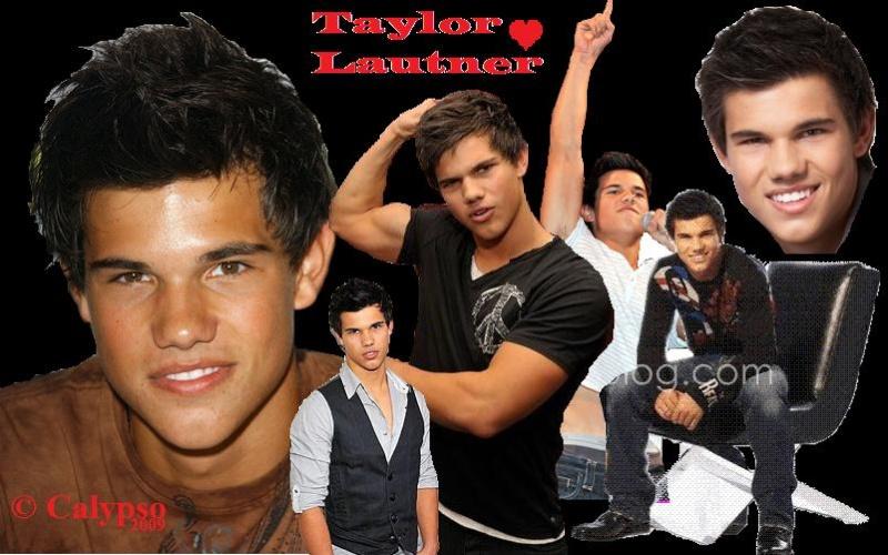 Offre de service Taylor14